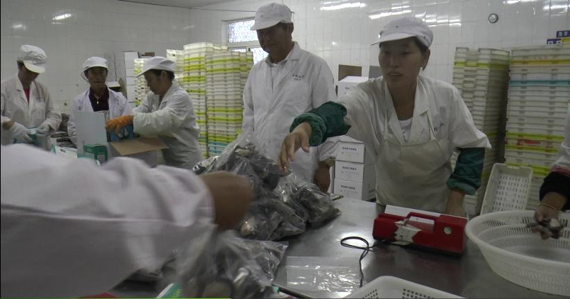 於定华在生产车间指导生产工作.png